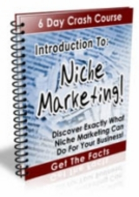 Product picture Introduction To Niche Marketing - 6 Day Crash Course