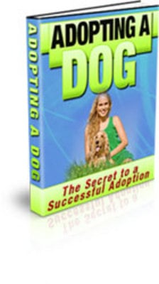 Product picture Adopting A Dog Ebook
